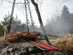 ezda-picnic-skara